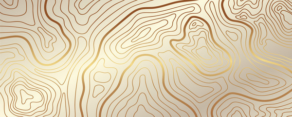 Luxury gold abstract topographic map background with golden lines  texture, 17:9 wallpaper design for fabric , packaging , web, geographic grid map vector illustration.