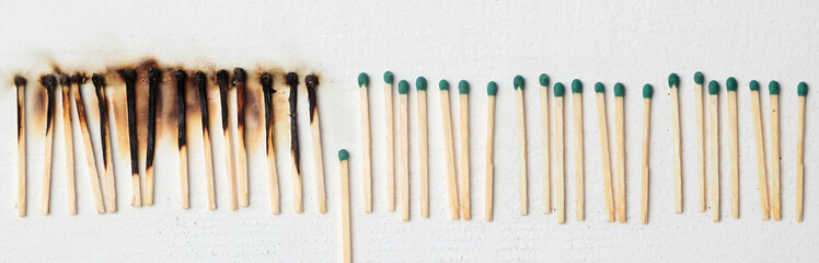 A lot of burnt matchsticks and one matchstick prevents following burning. Concept of stop spreading...