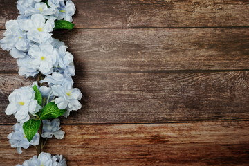Foto op Canvas Bloemen Top view Blooming Flowers frame with copy space on wooden background