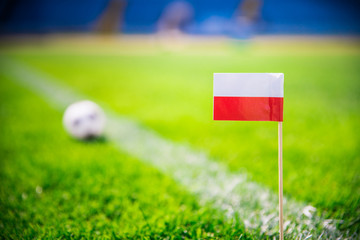 Poland national Flag and football ball on green grass. Fans, support photo, edit space