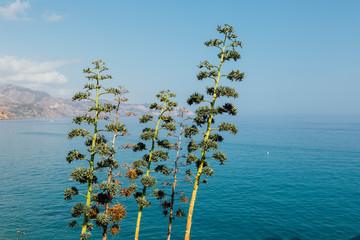 Playa Calahonda in Nerja in a beautiful bright sunny day in Nerja, Malaga, Spain