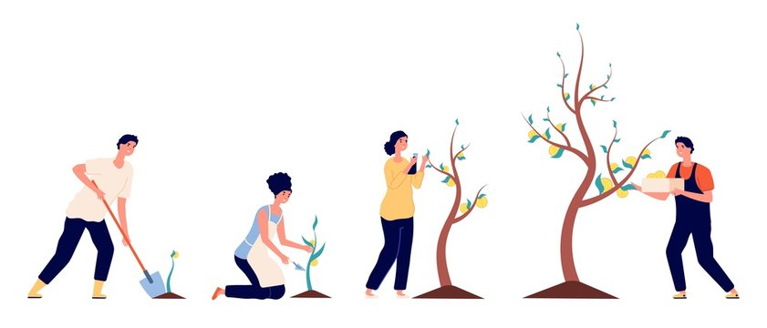 Growth money. Business investment revenue, prosperity financial fund. People seed coins and put rich tree. Young businessman vector concept. Investment growth money, financial income cash illustration