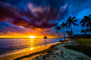 Fototapete - Beautiful sunrise at Chinaman's Hat on Oahu