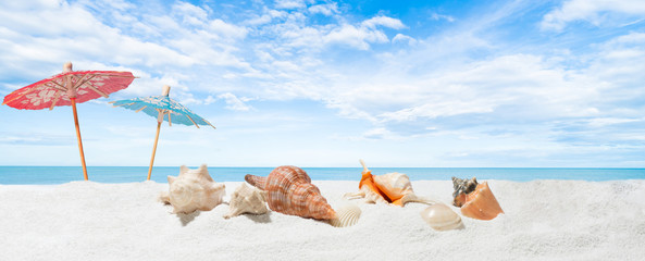 Summer  holidays beach banner - seashells on sand in tropical beach Fototapete