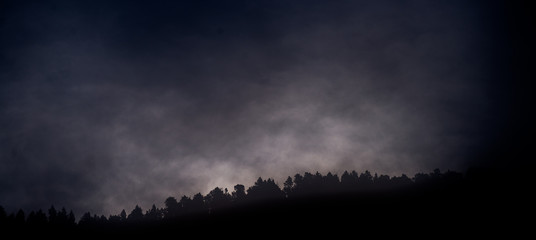 Poster Noir Brouillard