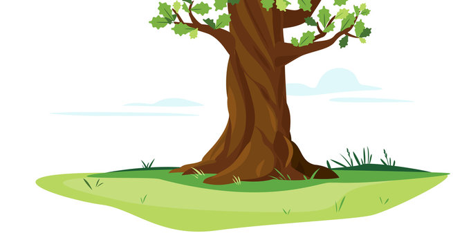 One wide massive old oak tree trunk with green leaves isolated illustration, majestic oak trunk on green meadow with grass in summer day isolated, part of tree