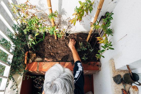 Old woman gardening on balcony