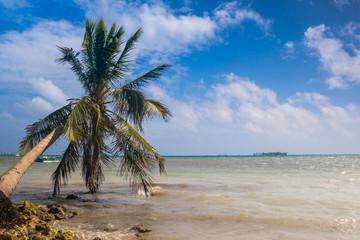 Autocollant pour porte Caraibes palm tree on the beach