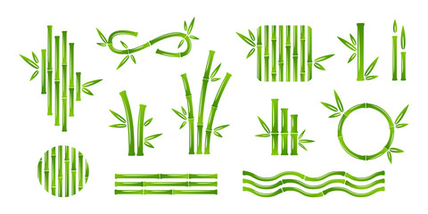 Bamboo decoration collection. Vector isolated design elements.