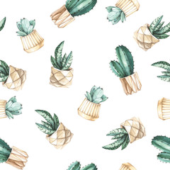 Aluminium Prints Plants in pots seamless pattern cacti in flower pots