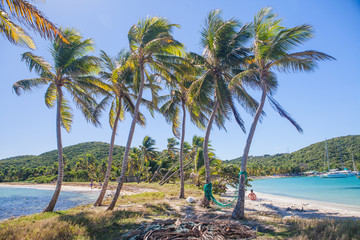 Caribbean Mayreau Island one of the Grenadines tropical beach with palm trees and turquoise ocean water