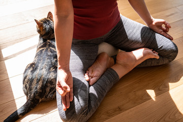 Young beautiful woman practicing yoga meditation indoors with her cat on wooden floor Fototapete