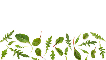 Fototapete - Banner of fresh salad, chard, arugula, mizuna, top view isolated on a white background with place for text.