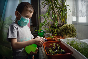 A little boy, during quarantine, irrigates plants at home with protection against coronovirus. Fototapete