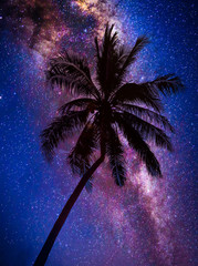 Wall Mural - Landscape with Milky way galaxy. Night sky with stars and silhouette coconut palm tree on the mountain. Long exposure photograph.