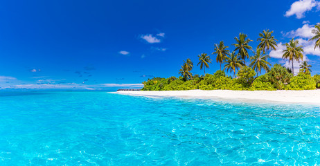 Fototapete - Summer beach landscape. Tropical island view, palm trees and amazing blue sea. Amazing beach scenery, white sand, exotic travel destination. Maldives beach landscape, idyllic landscape