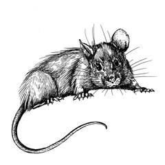 new year mouse, rat clip art graphics linner