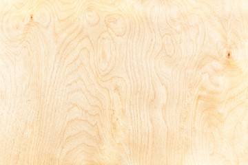 high-detailed birch plywood textured background with natural pattern Fotomurales