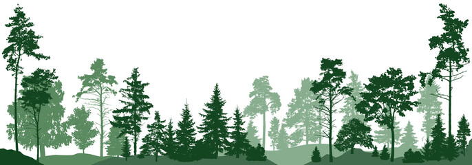 Forest trees. Isolated on white background. Vector illustration Fototapete