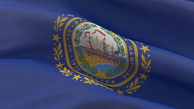 Flags of the states of USA. State of New Hampshire flag. 3D illustration.