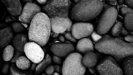 Poster Stones in Sand black pebbles on the beach background. black stone