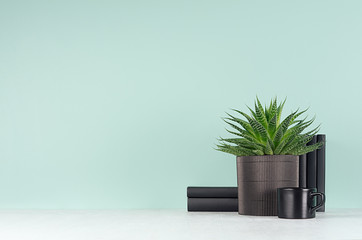 Elegant fresh home decor with green houseplant of aloe in ribbed black pot, black books in style green mint menthe interior on white wood table, copy space.
