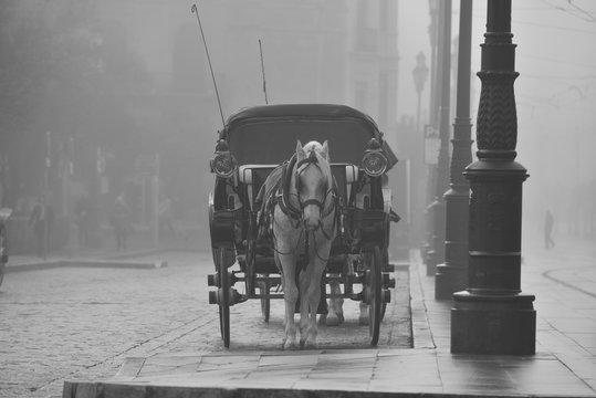 Sevilla mornin fog