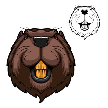 Beaver animal head vector mascot of hunting and sport design. Wild rodent mammal with bared teeth, red eyes and brown fur on angry muzzle. Canadian or American beaver symbol of hunter club, zoo, team