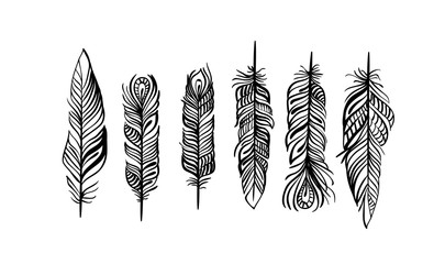 Pattern with magic eagle feather in line art style. Use it for print or web, package design. Fotomurales