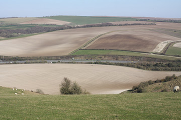 Sussex Landscape and A23 Road