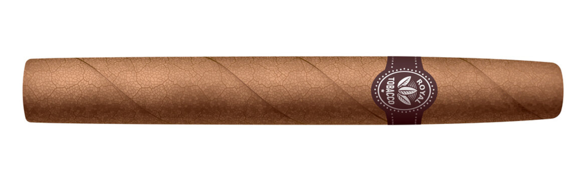 Realistic vector cigar isolated on white background