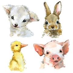 cute watercolor lamb, rabbit, piggy, duckling. cartoon farm animals illustration.