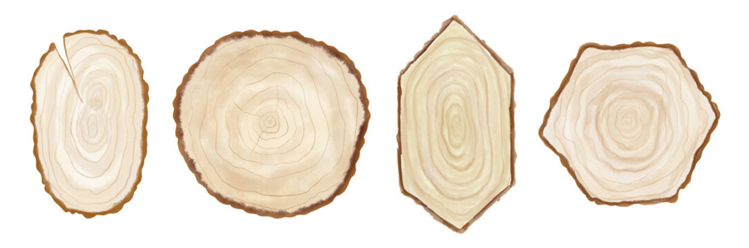 Watercolor hand painted wood slices of different shapes isolated on white background. Painted wooden texture in eco natural rustic style perfect for card making, wedding invitations and blog decor