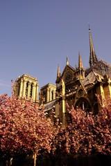 Incendie de Notre Dame avant 8h à Paris