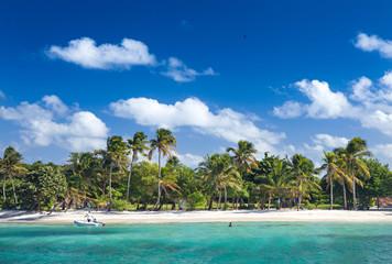 Petit Rameau Caribbean tropical Island Beach Coast