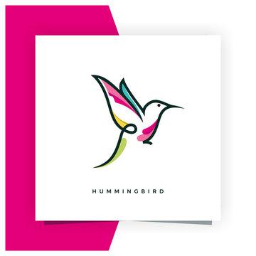 Hummingbird or Colibri Logo Design Inspiration Vector Stock - Premium Vector