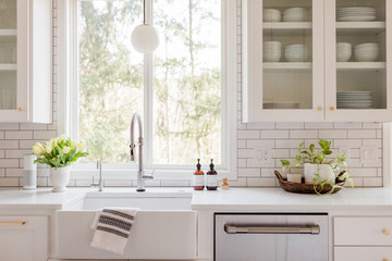 White and Neutral Contemporary Kitchen