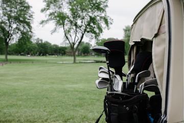 Golf Bag on a Cart