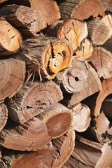 Chopping firewood in winter - log pile with axe