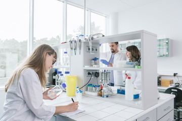 Young researchers working in laboratory