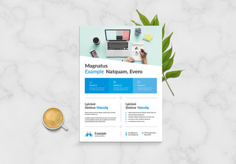 Business Flyer Layout with Box Design