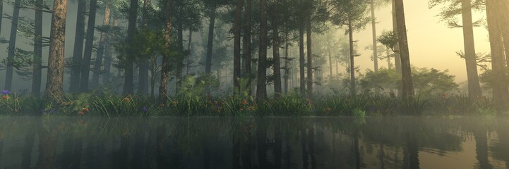 Wall Mural - Trees in a fog in the morning above the water, a forest in a haze above the river, a park above the lake,