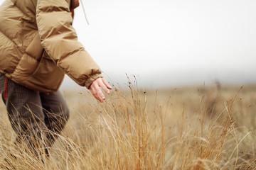 Unrecognizable female hands in autumn grass