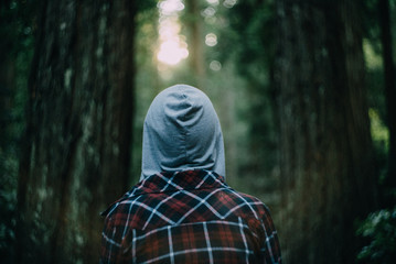 behind person in hoodie looking out towards large redwood tree forest