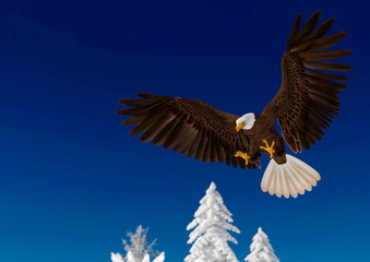 Fototapete - bald eagle in action on white snow_