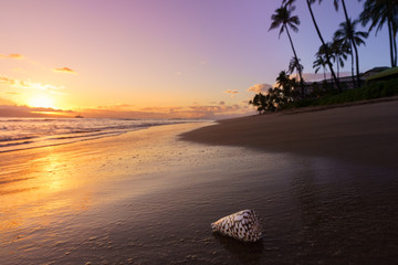 Photo sur Plexiglas Marron chocolat Beautiful Sunset on a Hawaiin beach