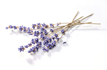 dried lavender flowers bunch close-up on white background