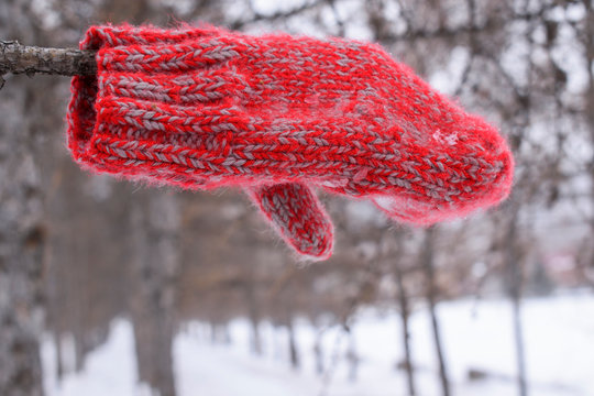Red mitt on a tree branch. Winter, forest. White snow. Concept of the direction of movement.