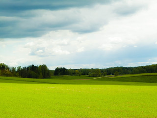 Poster Lime green Nature landscape of green field in Kashubian village. Nature and agriculture concept