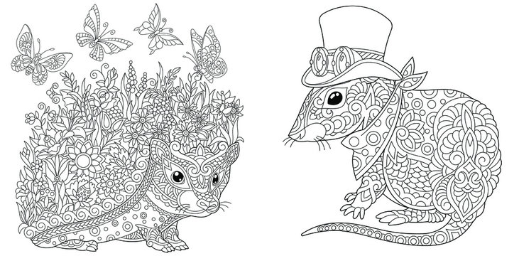 Coloring pages. Hedgehog with flowers and butterflies. Mouse in steampunk clothes.